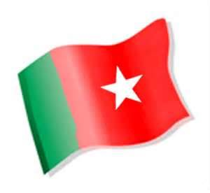 BNM flag