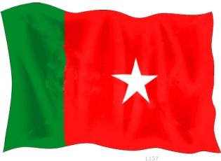 BNM-Flag4(2)